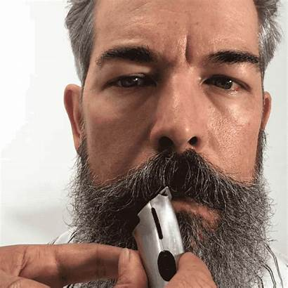 Beard Lip Grooming Handsome Male Line Clients