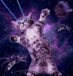 cat laser space cat with galaxy glasses page 3 pics about space