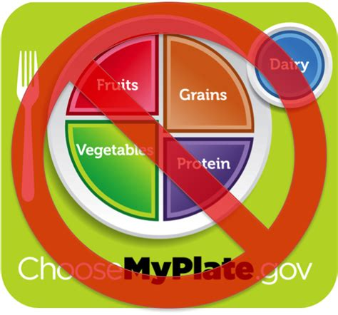 The Insanity Of Food Groups  Not Myplate Masculon