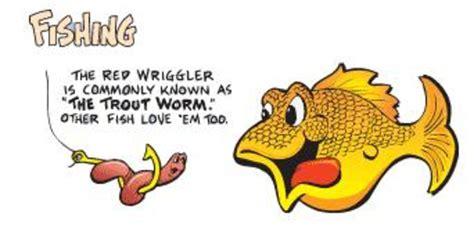worms wiggler fishing using wigglers