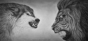 Wolf vs lion - drawing by lyyy971 on DeviantArt
