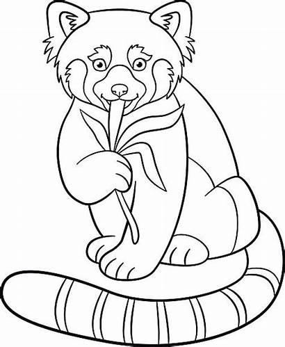 Panda Coloring Eats Leaves Printable Clip Illustrations