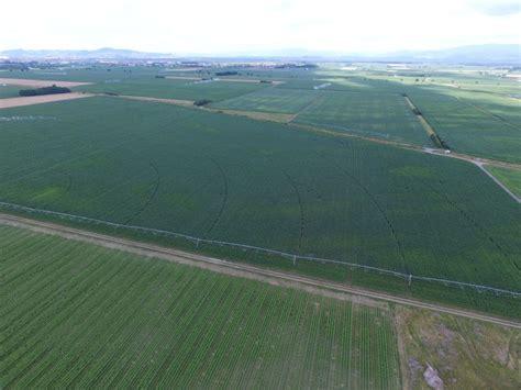 chambre agriculture bas rhin l 39 est agricole et viticole est agricole