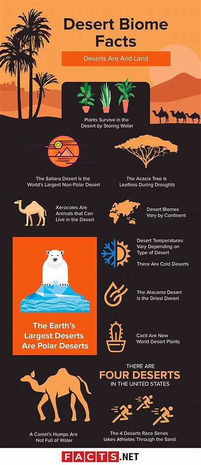 Desert Facts Biome Plants Animals