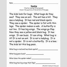 1st Grade Yearlong Phonics  Spelling  Word Work