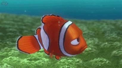 Reef Barrier Dead Giphy Pronounced Gifs Algae