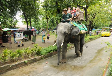 Zoological Garden Opinions On Zoological Gardens