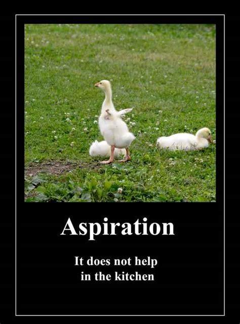 anti inspirational quotes quotesgram