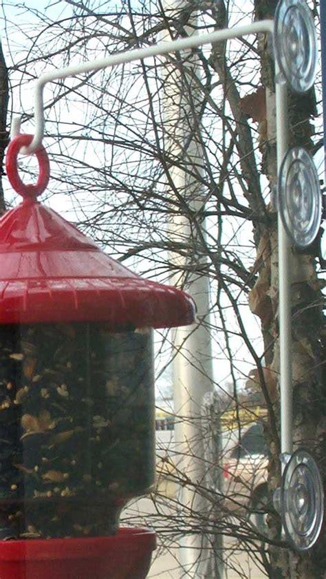 suction cup window hanger  window hanger  bird