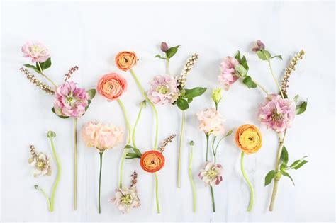 digital blooms march 2018 free desktop wallpapers justinecelina digital blooms april 2017 free desktop wallpapers