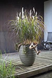 Grüne Kügelchen In Blumenerde : blumenk bel clever und leicht bepflanzt das pflanzk belblog ~ Lizthompson.info Haus und Dekorationen
