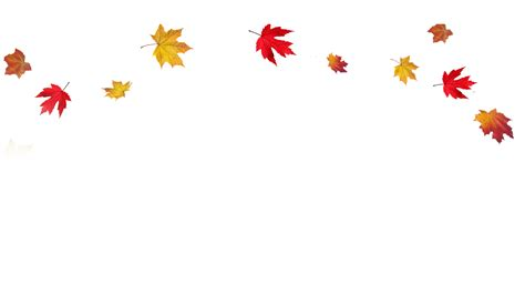 Madonna's Themes And Wallpapers Updated For Autumn