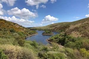 Explore West Dartmoor