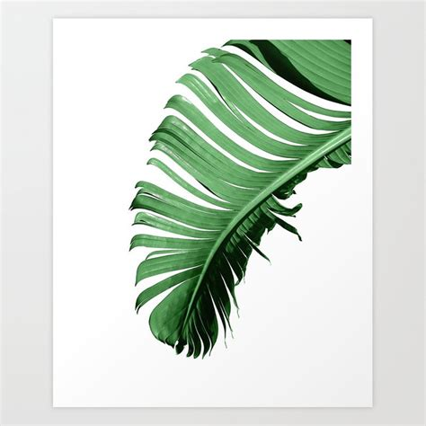 Cut out the shape and use it for coloring, crafts, stencils, and more. BANANA PALM LEAF Art Print by nordik | Society6