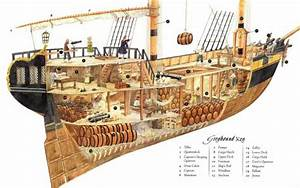 Read A Pirate Ship Diagram
