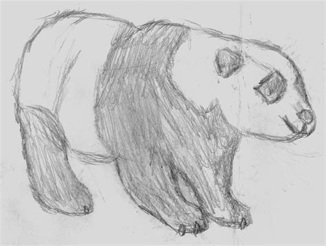 cool sketches  draw  animals easy drawings simple