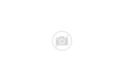 Schnauzer Miniature Screensavers Creativemarket Coloring Dog Schnauzers