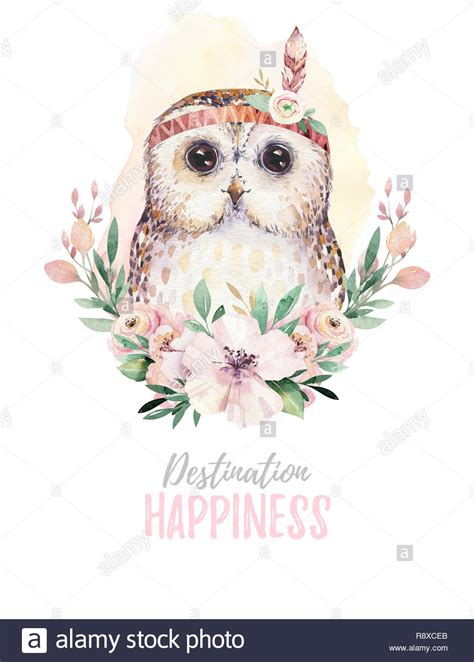 watercolor cartoon isolated cute baby owl animal