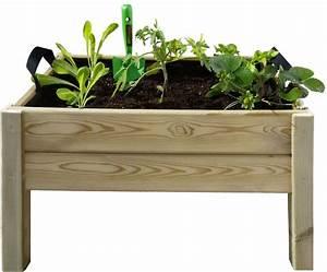 Bac Bois Potager : kit potager bac humus plantoir graines et coco ~ Melissatoandfro.com Idées de Décoration