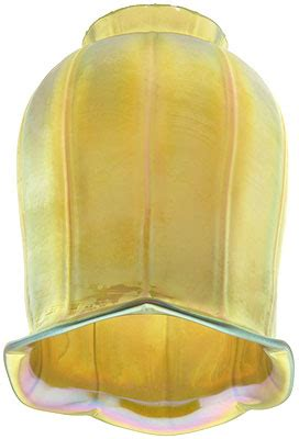 iridescent gold art glass tulip shade    fitter house  antique hardware