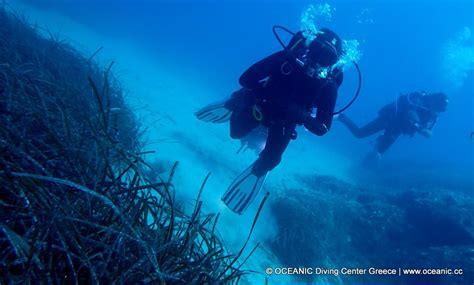 Oceanic Dive Porto Oceanic Diving Center Nikiti Halkidiki