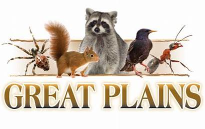 Plains Wildlife
