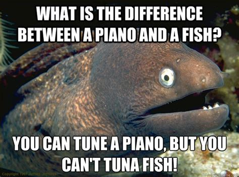 Tuna Meme - what is the difference between a piano and a fish you can