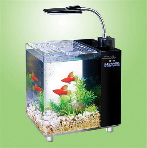 fish tank with filter and light hidom aquarium fish tank 10 and 15 litre mini office