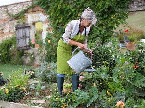 how to garden starting a vegetable garden saga