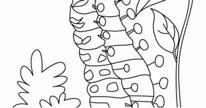 Satisfying Coloring Pages Caterpillar