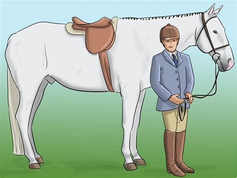 How To Make Horse Shows More Affordable 4 Steps With