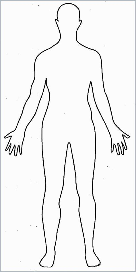 human body coloring sheets  print  basic anime body