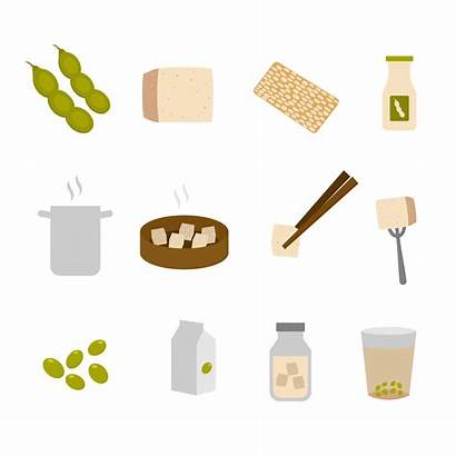 Tofu Vector Ingredients Soybean Clipart Fried Deep