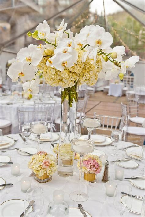25 best ideas about bailey pinterest bailey wedding and forest