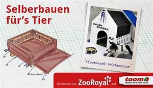 Hundehütten Zum Selberbauen : hundeh tte selber bauen so funktioniert es zooroyal magazin ~ Michelbontemps.com Haus und Dekorationen
