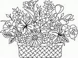 Coloring Basket Flower Pages Flowers Drawing Colouring Printable Bouquet Print Clipart Sketch Getdrawings Popular Clip Getcolorings Library Thietbixangdauvn sketch template