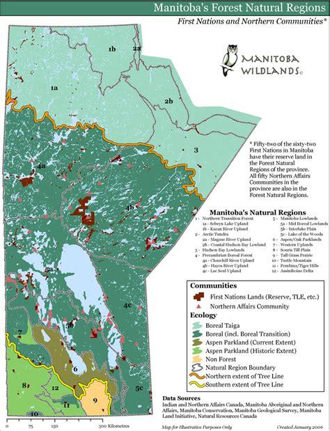 Manitoba Wildlands Forests