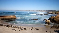 La Jolla San Diego Day Trip Top Things To Do and See
