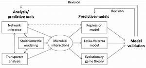 Processes | Free Full-Text | Mathematical Modeling of ...