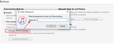 enter the password to unlock your iphone backup 3 ways to unlock iphone backup password easily