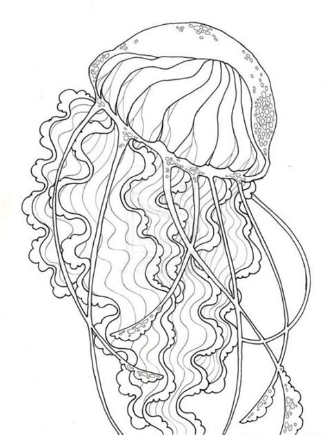 realistic jellyfish  printable coloring page