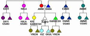 Anthropology Kinship Chart Turkish Kinterms
