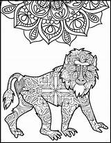 Baboon Coloring Pages Adult Adults Animal Printable Unique Getcolorings Print Sheets Visit Mandala sketch template