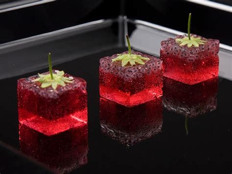 azote liquide cuisine animation cuisine moleculaire goreception