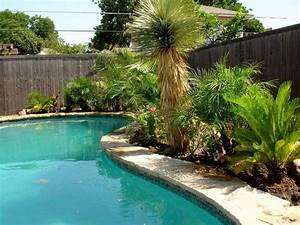 Pool Landscaping Ideas Backyard Pools - DMA Homes #86940