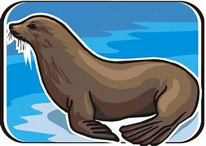 Free Seal Clipart