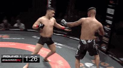Double Mma Knockout Fight End Ko Rare