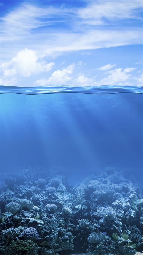wallpaper coral reef   sea underwater hd  nature  wallpaper  iphone