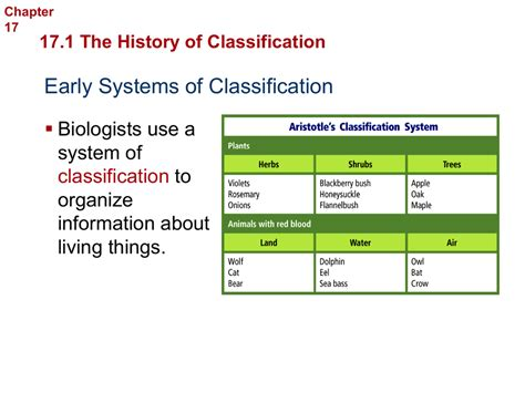 Worksheet Section 182 Modern Evolutionary Classification Worksheet Answers Grass Fedjp