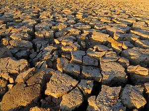 essay of drought